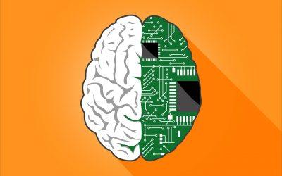 Wo sich Mensch und Maschine die Arbeit teilen